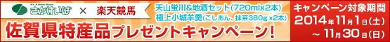 佐賀特産品プレゼントキャンペーン(11月)