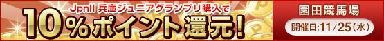ダートグレード競走キャンペーン 兵庫ジュニアグランプリ(Jpn2)