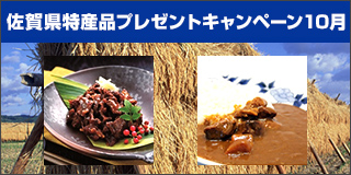 【佐賀】佐賀特産品「肥前旨唐2箱入ギフトセットS」「佐賀産和牛カレー3個セット」